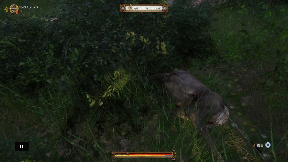 攻略チャート⑤:カポン卿に話しかけると、狩り開始。